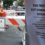 DeFusco calls for special meeting on Hoboken's Washington Street construction