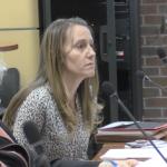 Sacco, Sires allies back Amy DeGise's bid for Hudson Dem committee chair