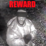Jersey City animal shelter offering $1,000 reward to identify man who repeatedly damaged property