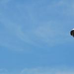 Jersey City officials explored using A.I. to detect guns via CCTV, emails show