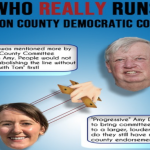 Congressional hopeful fights off accusations of sexism after posting HCDO protest flyer