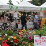 Jersey City to begin reopening farmers' markets with restrictions next week