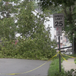 Downed trees, power outages plague Hudson County as Isaias passes through